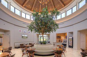 Vineyards Country Club Wellness Center